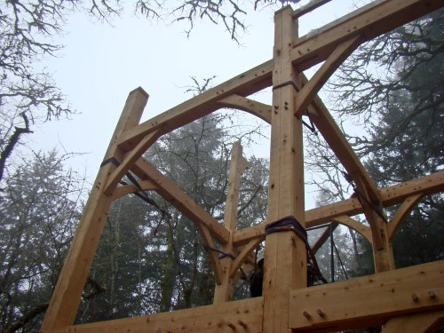 "Raising the frame of a ""treehouse"" in Salem last month"