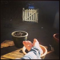 Sunny afternoon on my front porch